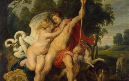 Рубенс, Венера и Адонис