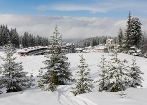 Горные лыжи в Болгарии. Какому курорту отдать предпочтение?