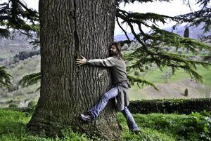 Что вам известно о самых разных деревьях мира?
