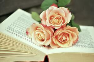 Литературные цветы. Внимательно ли вы читаете художественные произведения?